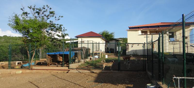 DOG Curacao zicht op huis 2