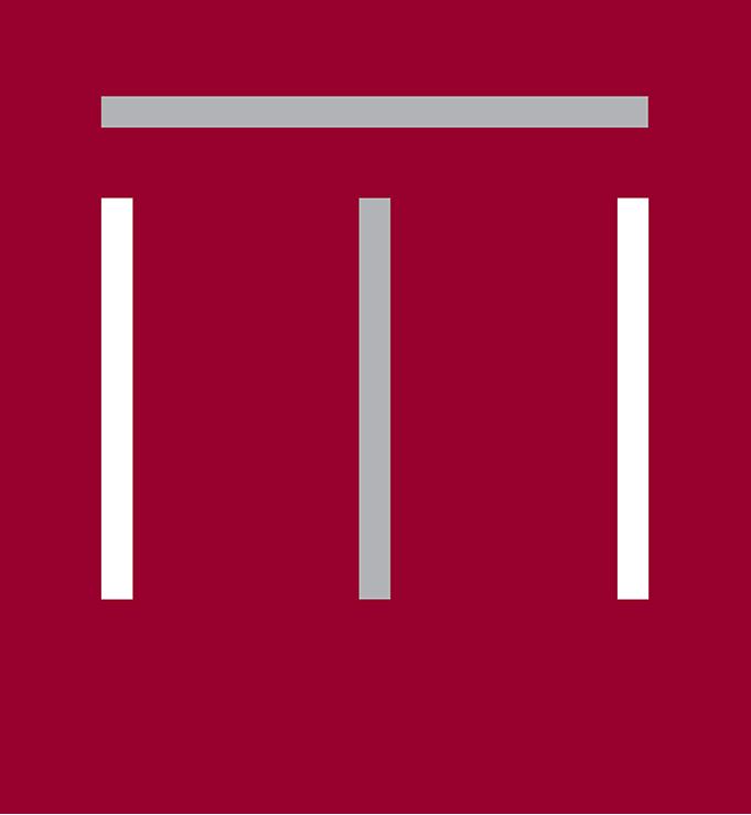 logo_magnus_kleur